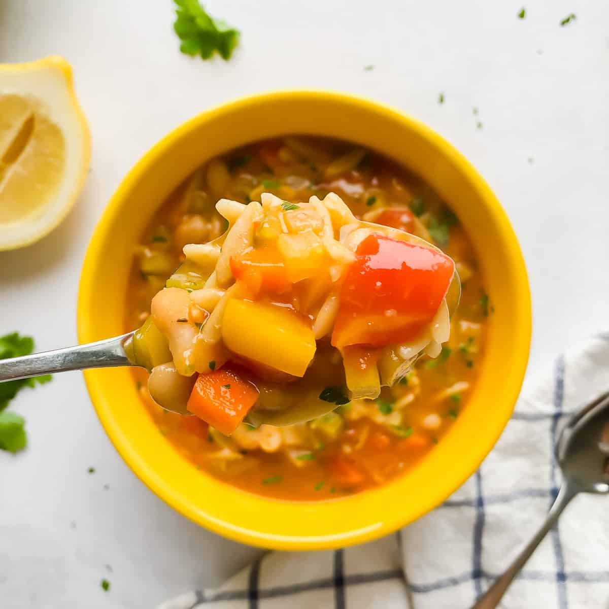 Vegetable Orzo Soup in a bowl
